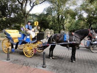 Central Park en NYC - paseo en coche de caballos