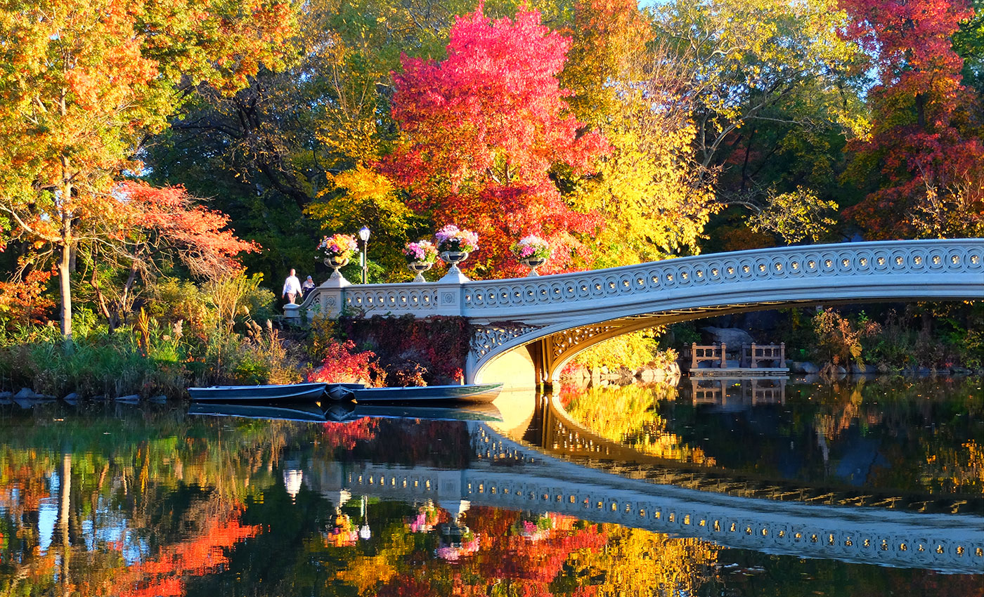 Central Park - Bow Bridge