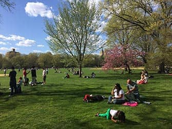 Central Park en Nueva York - Gente en Great Lawn
