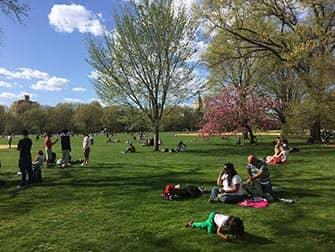Central Park en Nueva York - Gente en Great Lawn