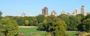 Central Park en Nueva York - Great Lawn