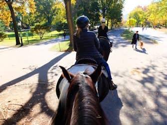 Central Park en Nueva York - Montar a caballo