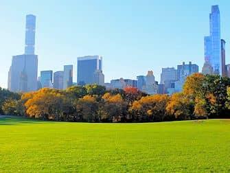 Central Park en Nueva York - Otono Sheep Meadow