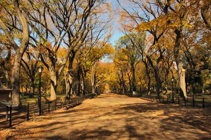 Central Park en Nueva York - Otono
