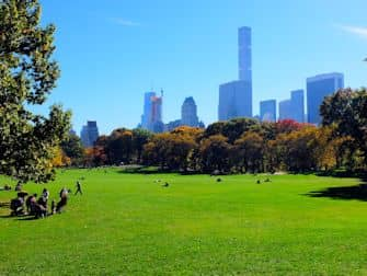 Central Park en Nueva York - Sheep Meadow