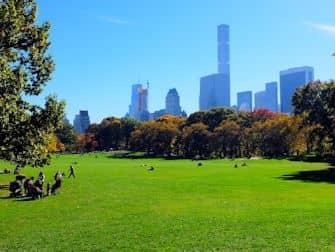 Central Park en Nueva York - Sheep Meadow