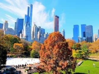 Patinar sobre hielo en Nueva York - Central Park