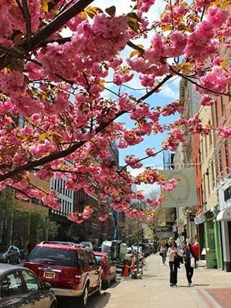 SoHo en Nueva York - primavera
