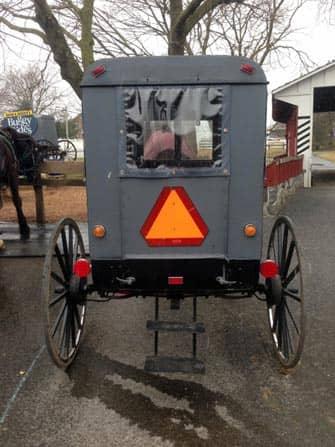 Excursion a Philadelphia y Amish Country - carro Amish