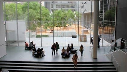 MoMA Museum of Modern Art en Nueva York - Jardin