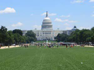 Excursion desde Nueva York a Washington DC en bus