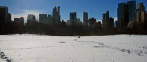 Temperaturas medias en Nueva York