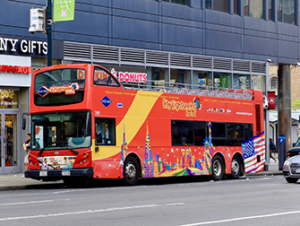 Bus Hop on Hop off Gray Line en Nueva York