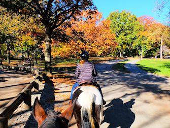 Montar a caballo en Central Park - Camino de herradura