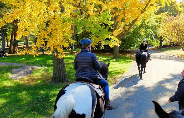 Montar a caballo en Central Park - Montando