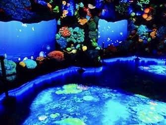 National Geographic Encounter Ocean Odyssey - La profundidad del océano